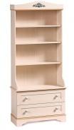 Knižnica Lilian - breza