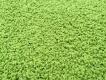 Kusový koberec Color Shaggy - zelené jablko