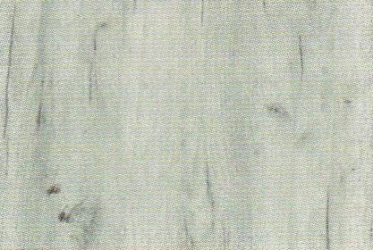 B-K001 Dub Biela