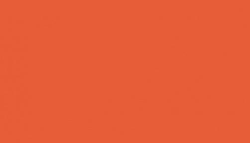 140 004 - pumpkin