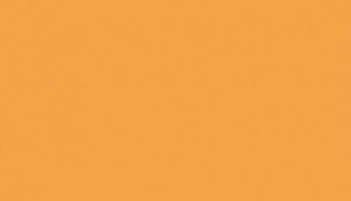 146 501 - orange