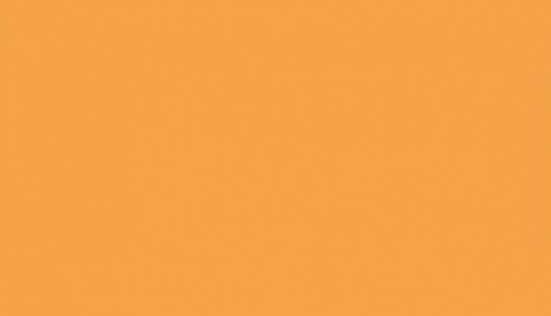 146 311 - orange